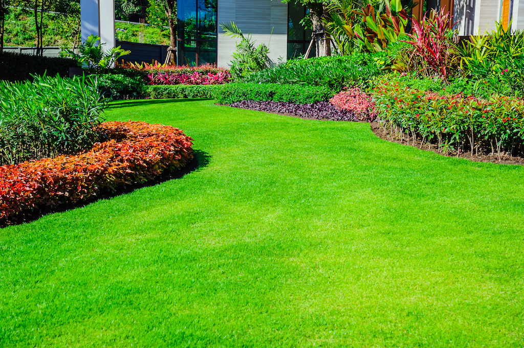 The Best Way to Keep Your Landscape Attractive